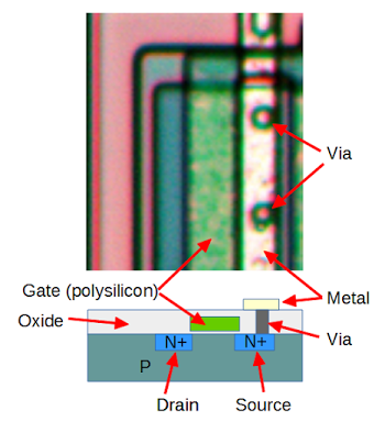 The structure of an NMOS transistor in the LMC5555 CMOS timer chip.