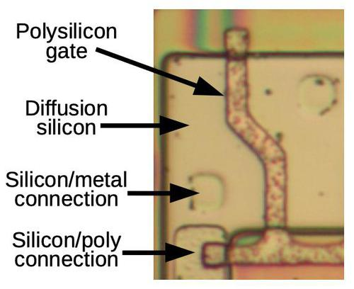 A transistor in the charge pump circuit. The polysilicon gate separates the transistor's source and drain on either side.