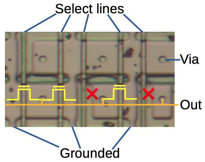 A portion of the constant ROM. Each select line selects a particular constant. Transistors are indicated by the yellow symbols. An X indicates a missing transistor, corresponding to a 0 bit. The orange line indicates the position of a metal wire. (The metal layer was dissolved for this picture.)