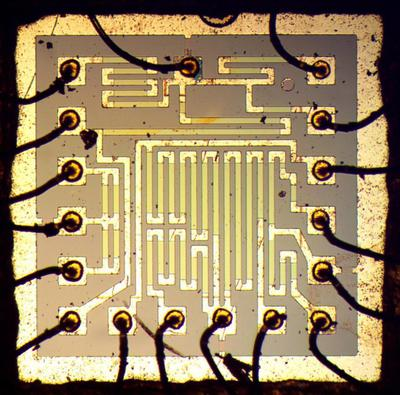 The die in the middle of the module contains multiple resistors.