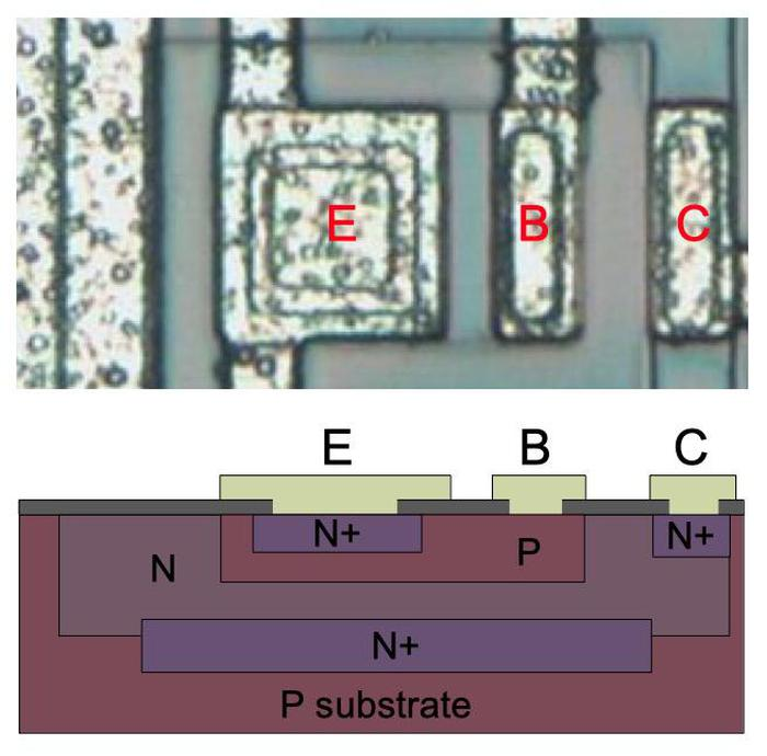 An NPN transistor in the amplifier chip. The collector (C), emitter (E), and base (B) are labeled, along with N and P doped silicon.