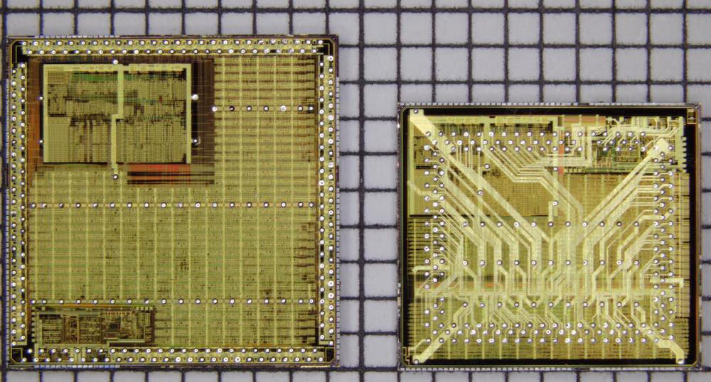 Comparison of the two chips. Photo courtesy of Antoine Bercovici.