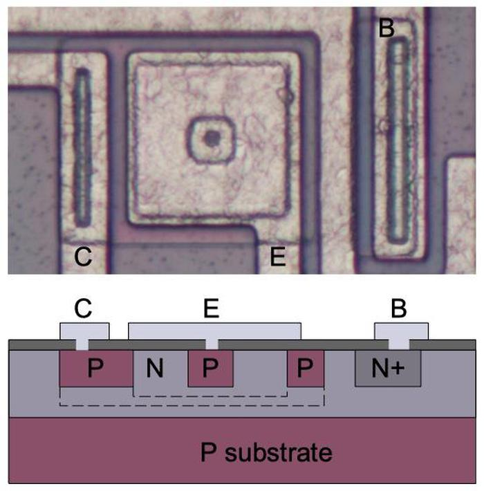 Diagram illustrating the construction of a PNP transistor. The dotted lines represent how the collector and base surround the emitter.