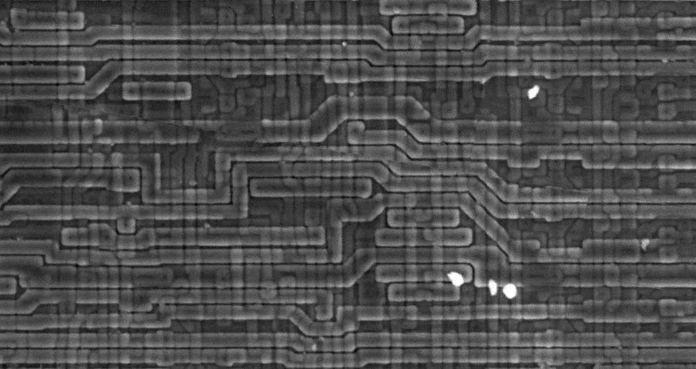 Electron microscope photo of the XC2064, courtesy of John McMaster.
